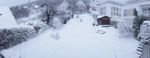 Schneesturm im Hausgarten um 16.00 Uhr