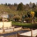 Hochbeete, frisch errichtet im Frühjahr 2014