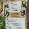 Infotafel im Eden Project