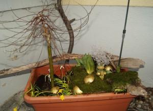 Neue Gartenlandschaft im Rollcontainer