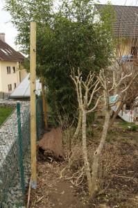 Holzpfahl am Zaun, für die Sichtschutzmatten