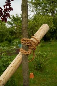 Achterknoten zum befestigen des Stützpfahles