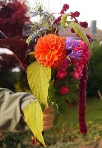 Ein farbenfroher Blumenstrauß im November