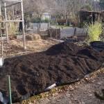 Unter dem Kompost hindert eine Folie vor allem die Ackerwinde am weiterwuchern