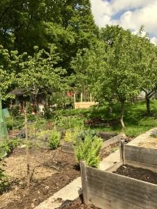 Der Blick in den GartenGarten