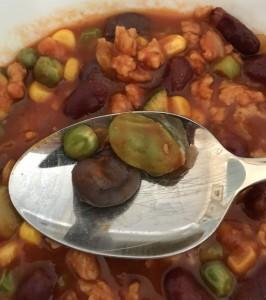 Chili Con Carne mit eigener Ernte