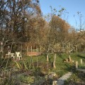 GartenGarten im November